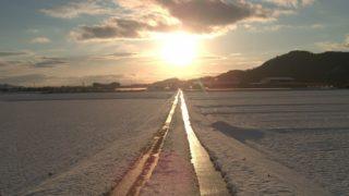 太陽に続く道
